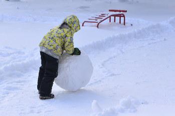複利運用,雪だるま式
