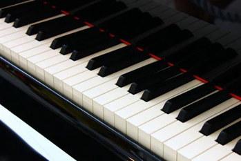 ピタゴラス,音楽,数字