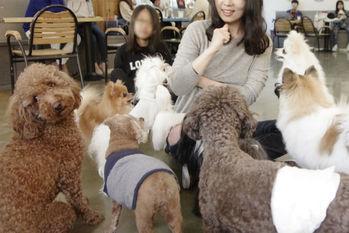 韓国経済,猫,カフェ,フランチャイズ2