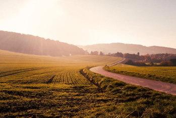 農地相続,相続税評価