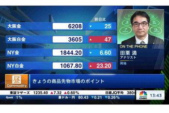 コモディティー情報【2021/01/13】