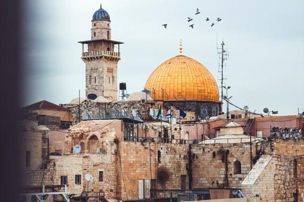 健康,IT,イスラエル