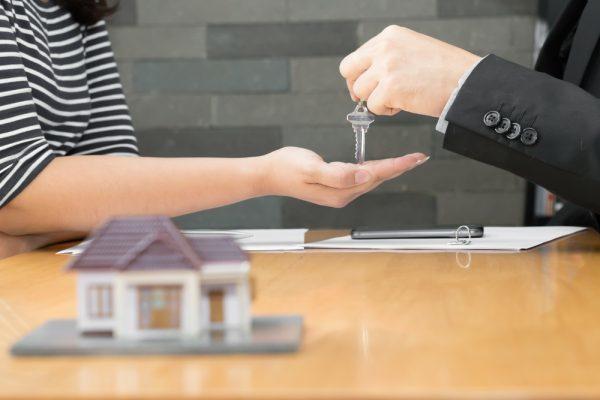 Singapore Property Developer Sales