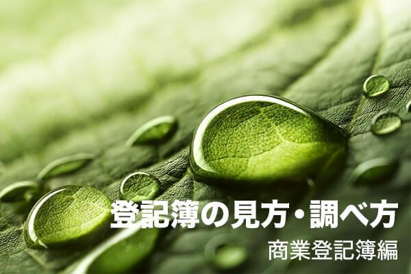 登記簿の見方・調べ方 商業登記簿編