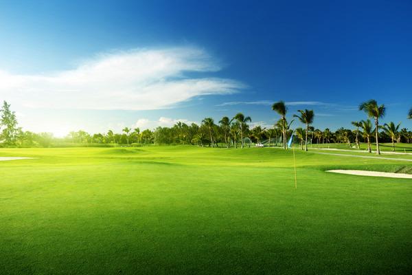 ゴルフ,お金持ち,ランキング