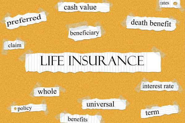 終身保険,定期保険,違い,種類,解約返戻金,解説