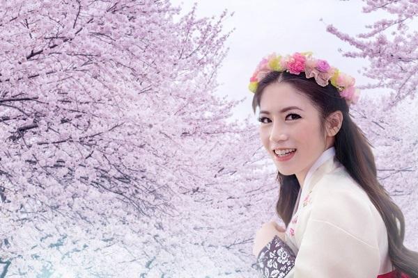 韓国,独身,晩婚,離婚,未婚