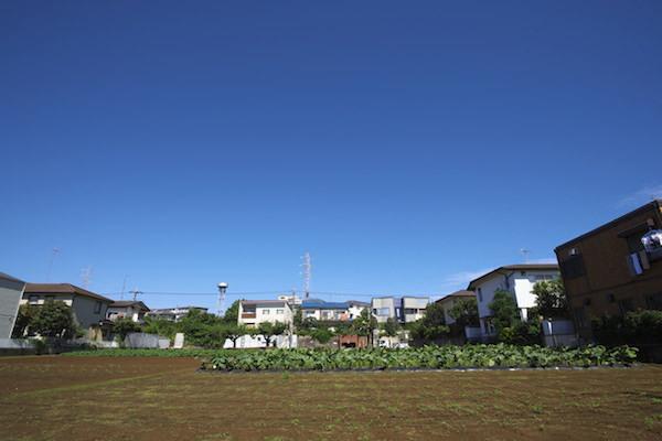 生産緑地法,都市圏,土地