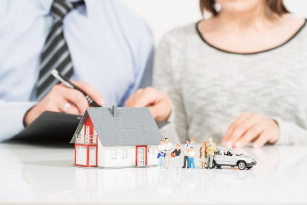 保険, 貯蓄, 個人年金保険, 外貨建保険, 低解約返戻金型終身保険