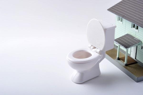 不動産,トイレ,トイレデー,和式,洋式