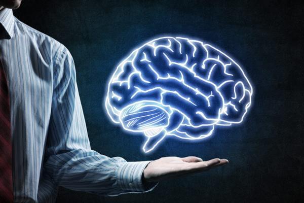 行動経済学,脳のクセ