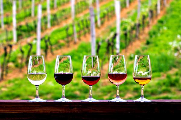 最高級ワイン,もてなす,極意